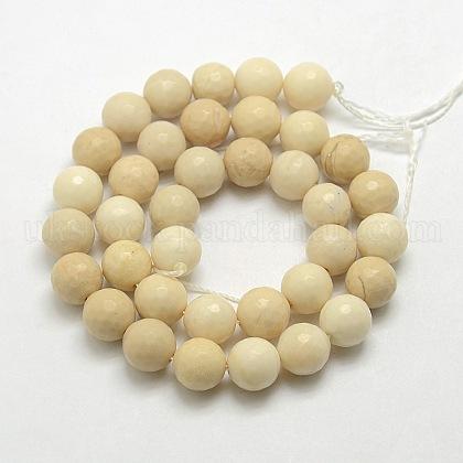 Natural Gemstone Petrified Wood Round Beads StrandsUK-G-O021-6mm-12-1