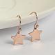 Star 304 Stainless Steel Dangle EarringsUK-EJEW-O040-03RG-K-1